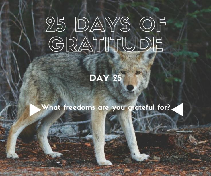 25-days-of-gratitude-25
